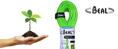 beal-plant-a-tree
